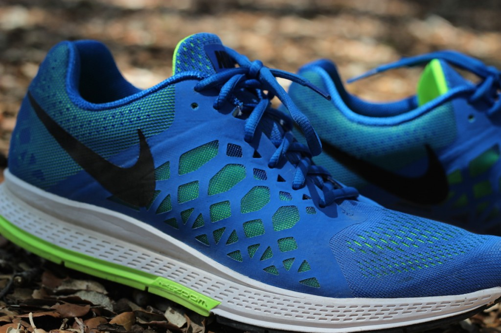 Nike_Air_Pegasus_31_test_6
